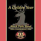 CD cover - A Golden Year