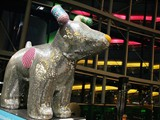 A 'Great North Snowdog' in the Sage